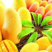 16 Vorteile von Mango auf die Gesundheit und Schönheit