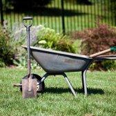 5 Pflegetipps Rasen Faul