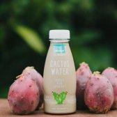 Kampf Getränk: das Werk wird Kokoswasser trinken als nächstes?