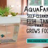 Wachsen Sie Lebensmittel, Gemüse und Kräuter drinnen mit diesen vier unglaublich innovative Pflanzer