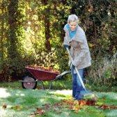Wie Sie Ihren Garten winterfest