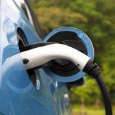 Vor- und Nachteile von Elektroautos: die Immobilie wert?