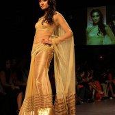Saris Sheer - die dynamische Tradition