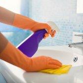 Spring Cleaning Cheat Sheet: Tipps, Hinweise und Tipps