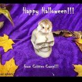 Die entzückende Halloween-Fotoaufnahme Sie heute sehen werden
