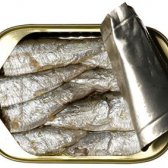 Die erstaunlichen gesundheitlichen Vorteile von Sardinen