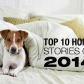 Die besten Geschichten Haus 2014