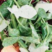 Wassermelone Rettich und Rüben-Salat