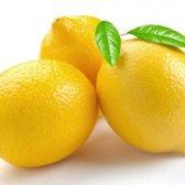 Wenn das Leben Ihnen Zitronen gibt, Limonade Zitrone wahr machen: im Coupon