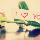Liebesbriefe an einen Freund