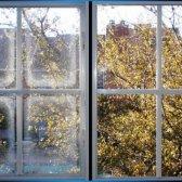 Feuchtigkeit im Dual-Fenster Fenster