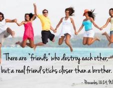 Bibelverse über Freundschaft
