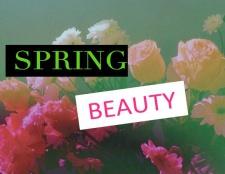 4 Frühlingsschönheit startet die wir lieben