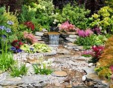 Verteidigen gegen Hitze: Garten Ausgabe