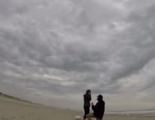 Hund zieht an die Eigentümer Heiratsantrag!