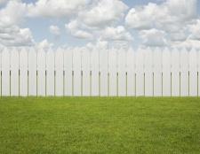 Im zeitigen Frühjahr, die Rasenpflege-Tipps