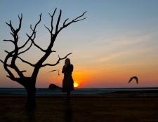 Gefühle: Einsamkeit gegen Emotionen