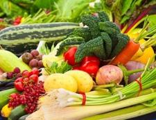 Steigern Sie Ihren eigenen Gemüsegarten Überschuss fällt