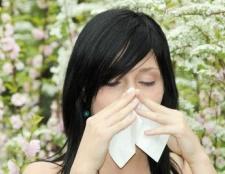 Die Behandlung von saisonalen Allergien mit der chinesischen Medizin und Akupunktur